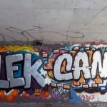 Alek. Cans.