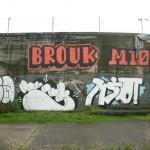 Oea, Brouk, Mio