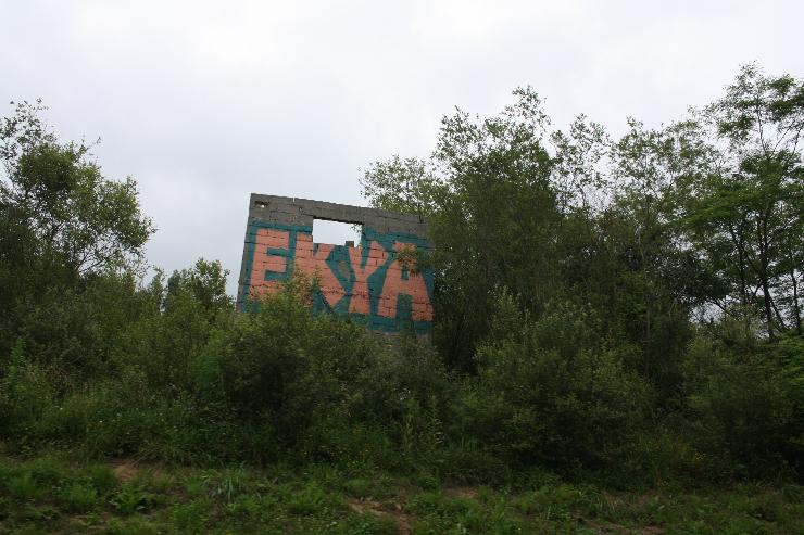 ekya-