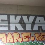 Ekya, Fare