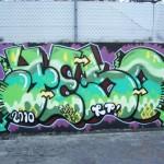 yeso-2010